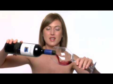 Naked Wine Show 1084 Gato Negro Sauvignon Blanc