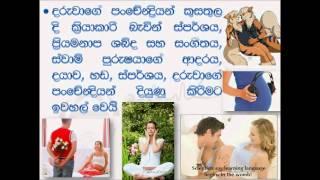 Advice for Pregnant Mothers in Sri Lanka
