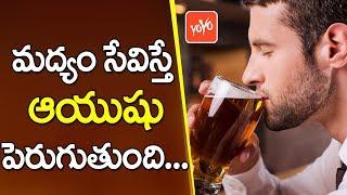 మద్యం సేవిస్తే ఆయుషు పెరుగుతుంది !  Can Drinking Alcohol Really Extend Your Life?