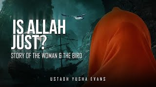 Is Allah Just? – Story Of The Woman & The Bird