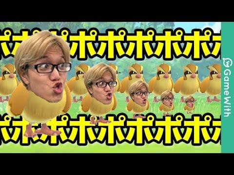【ポケモンGO攻略動画】【ポケモンGO】ポッポポポポー!【Pokemon GO】  – 長さ: 6:57。