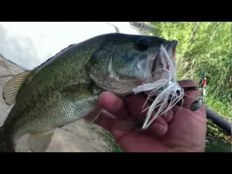 Fishing report - 003.MOV Video