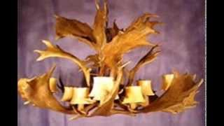 A Deer Chandelier is made from Antlers That Are Shed - No Deer h