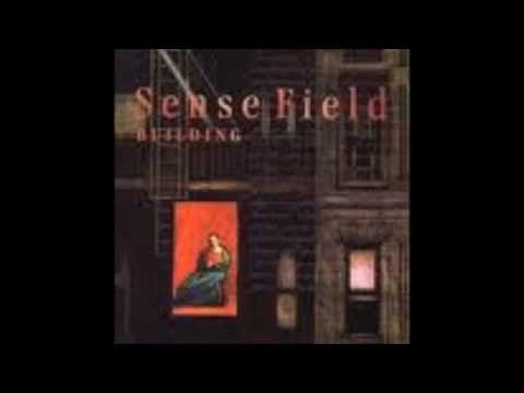 Sense Field - No Man