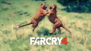 Far cry 4 - Animals Fighting
