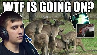 Arteezy Dota 2 ► WTF Is Going On Boyz