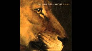 Watch William Fitzsimmons Lions video