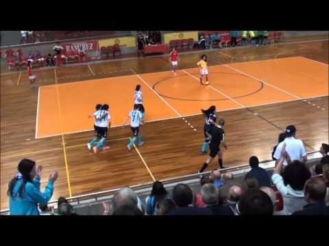 SL BENFICA - FC VERMOIM