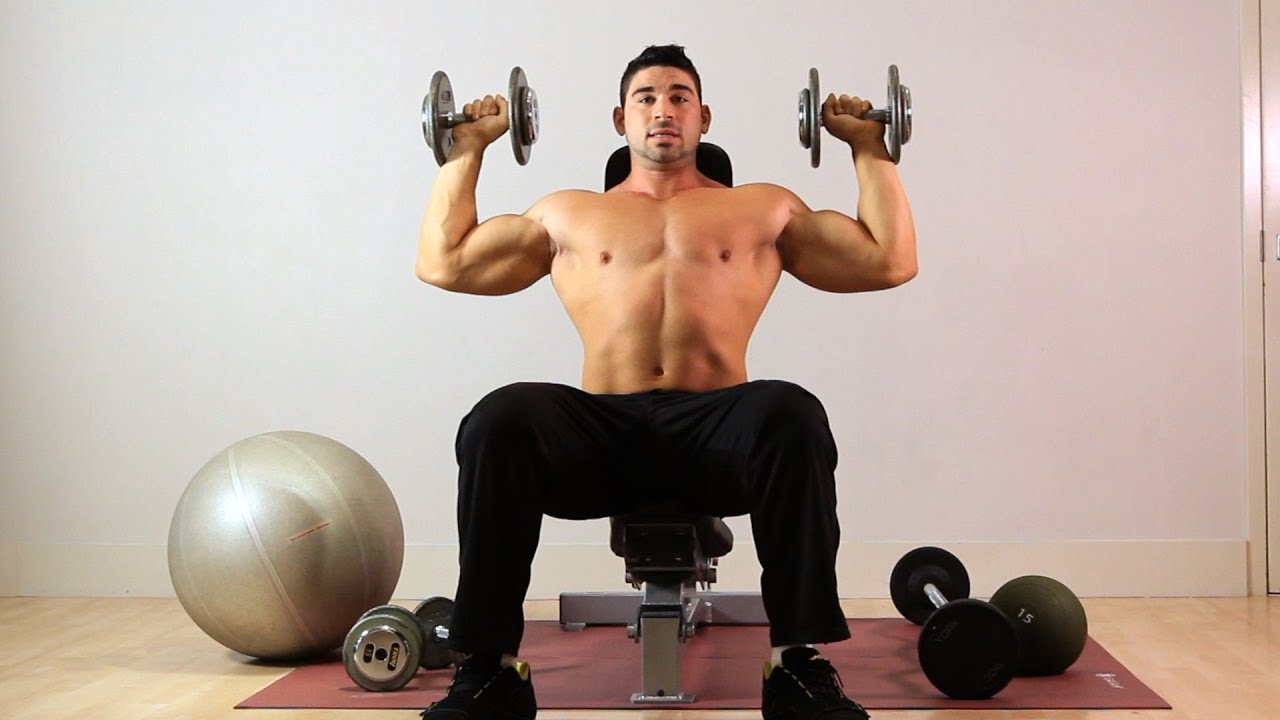 How to Do Seated Overhead Dumbbell Press   Arm Workout ...
