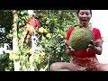 Survival skills: Finding Natural jackfruit in Wild for Food - Ripe jackfruit eating delicious