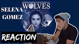 Download Lagu Selena Gomez, Marshmello - Wolves (Visualizer) | REACTION Gratis STAFABAND