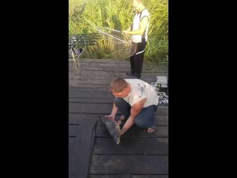 наша рыбалка о счастливчик