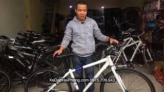 Bicycling Momentum Touring Bike in