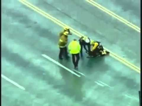 Rescuing dog in LA river