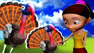 Bird Rhymes Collection in Bengali 4 | বাংলা গান | Bengali Rhymes For Kids | 3D Bird Songs in Bengali