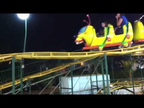Caterpillar – Bruco (Cipro -Settembre 2011) – Angelica