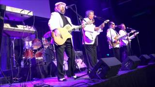 The Association - Concert - Austin Texas 2017