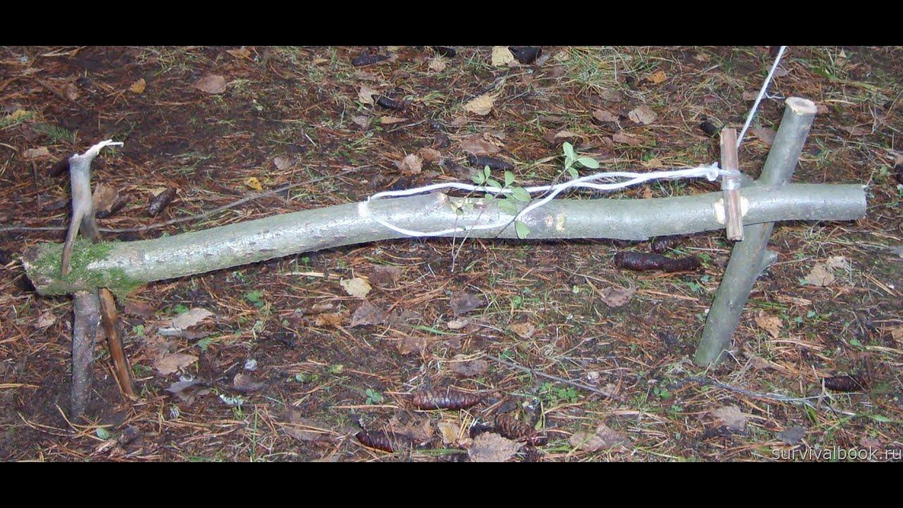 Ловушки для животных в лесу своими руками
