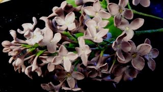 Сирень из холодного фарфора / How to make a lilac from a cold porcelain