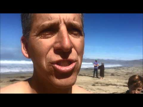 Surfer unhurt after shark bites board