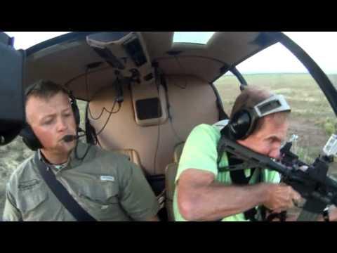 helicopter-hog-hunting-helps-local-farmers-and-ranchers-control-wild-hog-population.html