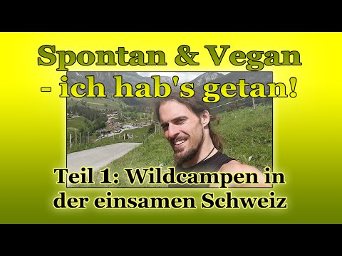 Spontan & Vegan - ich hab's getan! Trampen durch Europa: Wildcampen in einsamer Schweiz (Teil1)
