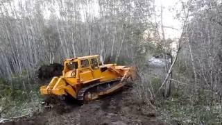 Bulldozer making logging roads