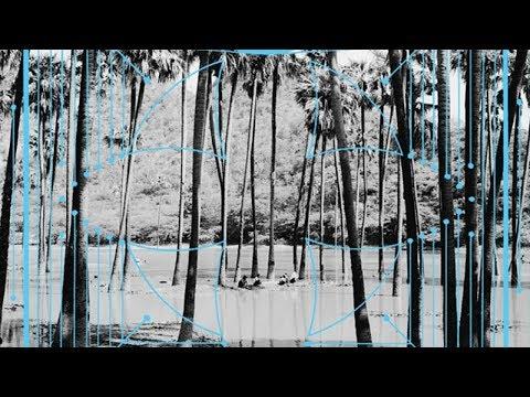 Four Tet - Lion (Jamie XX Remix)