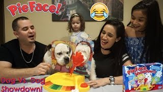 DOGS playing Pie face showdown FAIL new pie game challenge