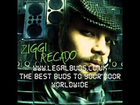 Misc Unsigned Bands - Ziggi Recado - Away From Home