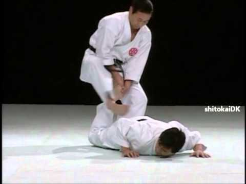 Kururunfa bunkai. video