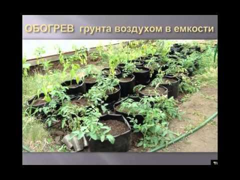 Как организовать полив на даче своими руками