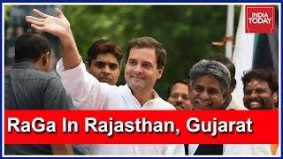 Rahul Gandhi To Address Poll Rallies In Rajasthan, Gujarat Today