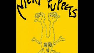 Watch Meat Puppets Meltdown video