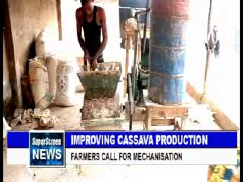 Improving Cassava Production