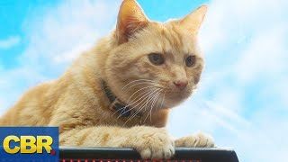 Download Lagu What Nobody Realized About Goose The Cat In Captain Marvel Gratis Mp3 Pedia