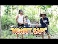 "JOMBLO HAPPY COVER JAWA PARODY CLIP ""NGARIT SAPI"""
