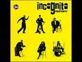 Incognito-Deep Waters