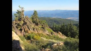 Watch Sons Of Korah Psalm 116 video