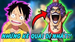 Top 10 Nhân Vật Vô Cùng Kì Lạ và Thú Vị Trong One Piece