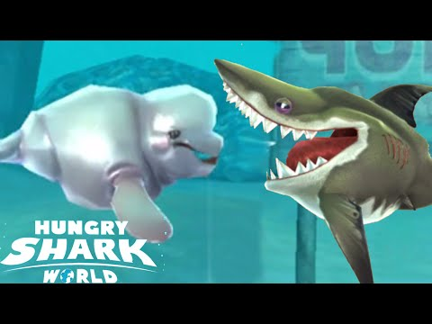 Hungry Shark World - All New Shark Pet Kraken Megalodon Shark!