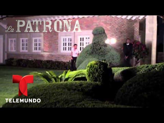 La Patrona / Detrás de la explosión con Tomás Goros / Telemundo