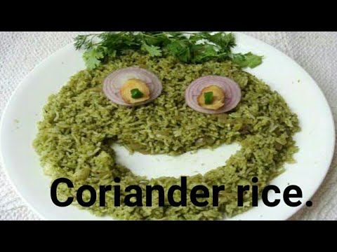 Coriander Rice in Telugu.