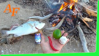 Catch Cook Chilli Lime Fish on the fire EP.358