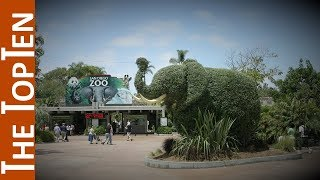 The Top Ten Largest Zoos in the World