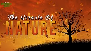 The Miracle Of Nature – Facts From The Quran