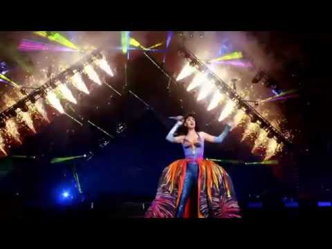 Katy Perry - Firework (Live at The Prismatic World Tour)