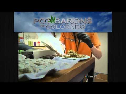 Pot Barons of Colorado | Season 1 Episode 2 | The Race to Aurora