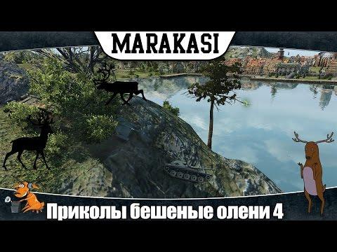 World of Tanks приколы бешеные олени 4 обострение у оленей