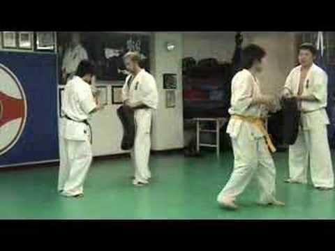 Ichigeki Training - This is Kyokushin Karate Image 1